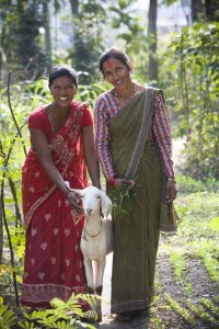 Anju Chaudary (left) received a goat from Devake Adhikari in a Pass on the Gift ceremony. Photo by Geoff Oliver Bugbee
